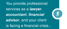 You are a Lawyer, Accountant, or Financial Advisor